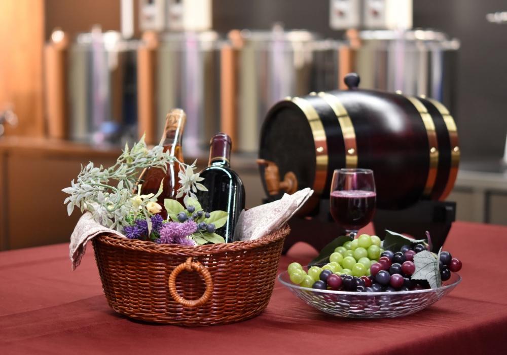 全国初!ワイン作りを学べるワイン醸造プラントが完成